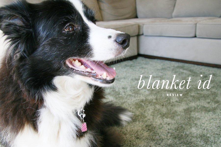 Blanket ID Dog Tags   Pretty Fluffy