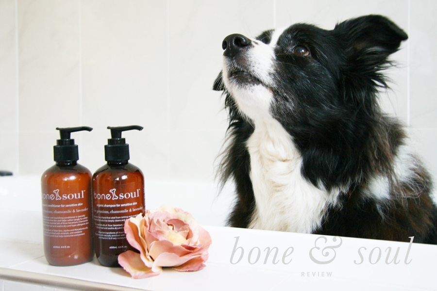 Bone & Soul Dog Grooming Review | Pretty Fluffy