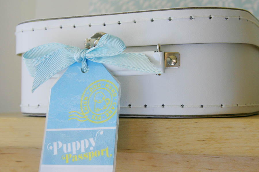 DIY Pet Luggage Tag | Pretty Fluffy