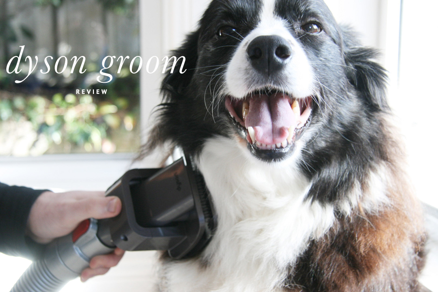 Bye bye pet hair! A full review or the Dyson Groom tool for pets - and a step by step guide on how to use it (even with dogs scared of the vacuum!) | Dyson Groom Review | Pretty Fluffy