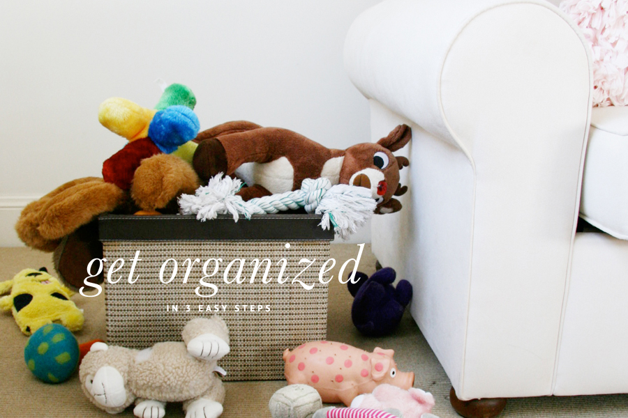 Pet Friendly Organization in 3 Easy Steps | Pretty Fluffy