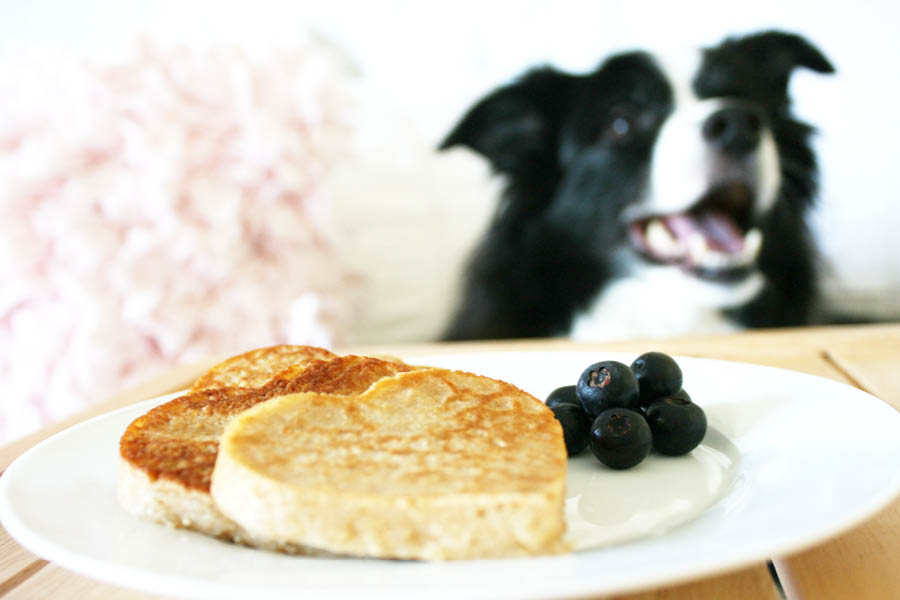 Dog Treat Pancake Recipe | Pretty Fluffy