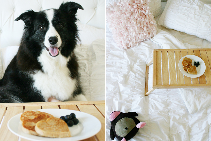 Valentines Brunch for you and your Pooch | Pretty Fluffy