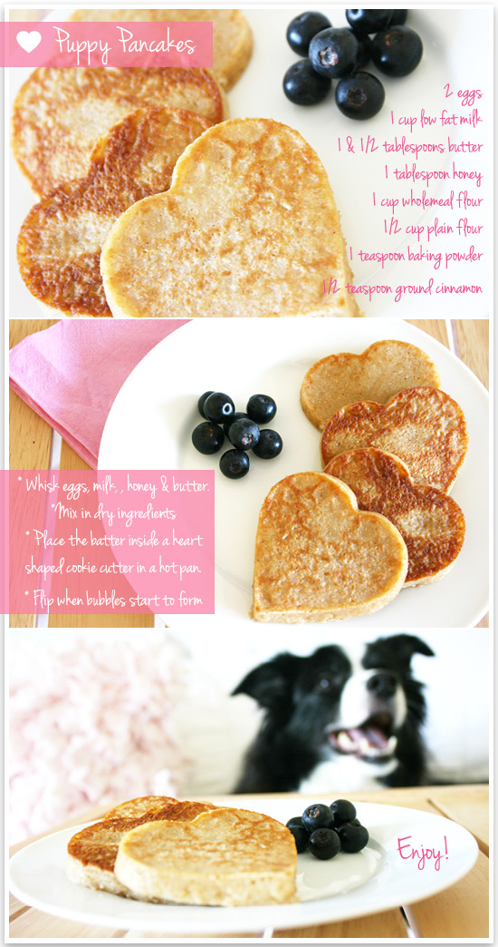 Puppy Pancakes Recipe - DIY Valentine's Day Brunch | A budget friendly stylish DIY Valentines Brunch - the perfect way to pamper your favourite furry friend this Valentine's Day! Grab the full dog friendly pancake recipe here.