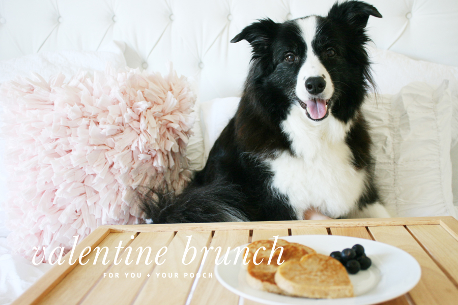 Pet Friendly Valentines Brunch | Pretty Fluffy
