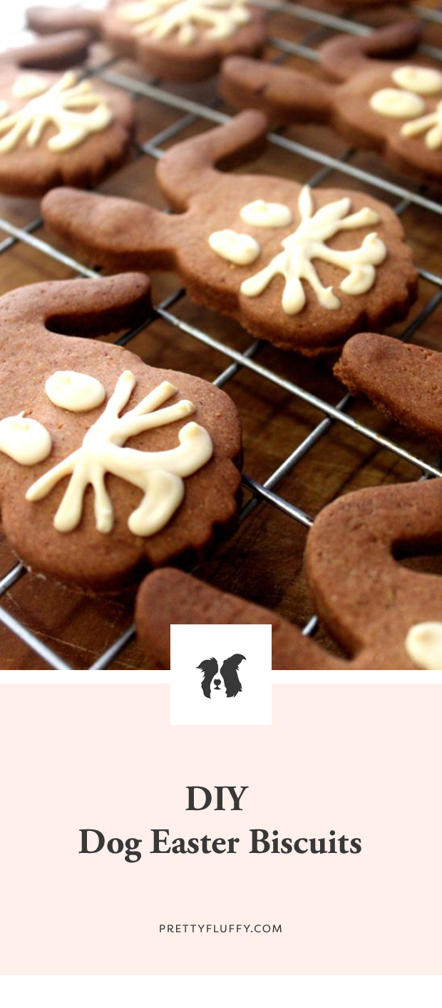 Make your own dog easter cookies - with cute bunny faces. Super easy to make, healthy, dog-safe ingredients and 100% tasty! Grab the FREE recipe here.