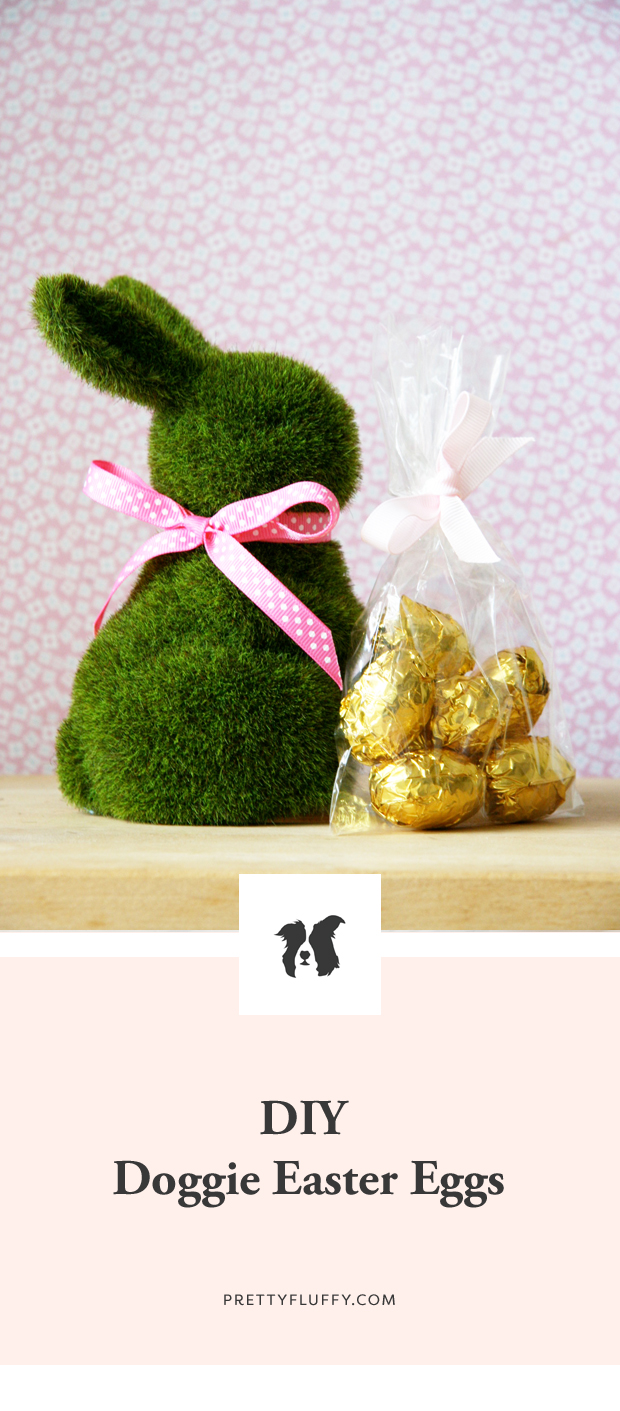 Make your own dog friendly easter eggs with our free DIY recipe. 100% dog safe ingredients, quick and easy tutorial and yummy treats guaranteed!
