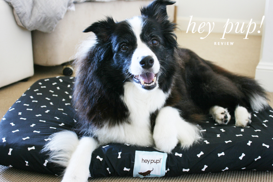 Hey Pup Dog Bed Covers Review | Pretty Fluffy