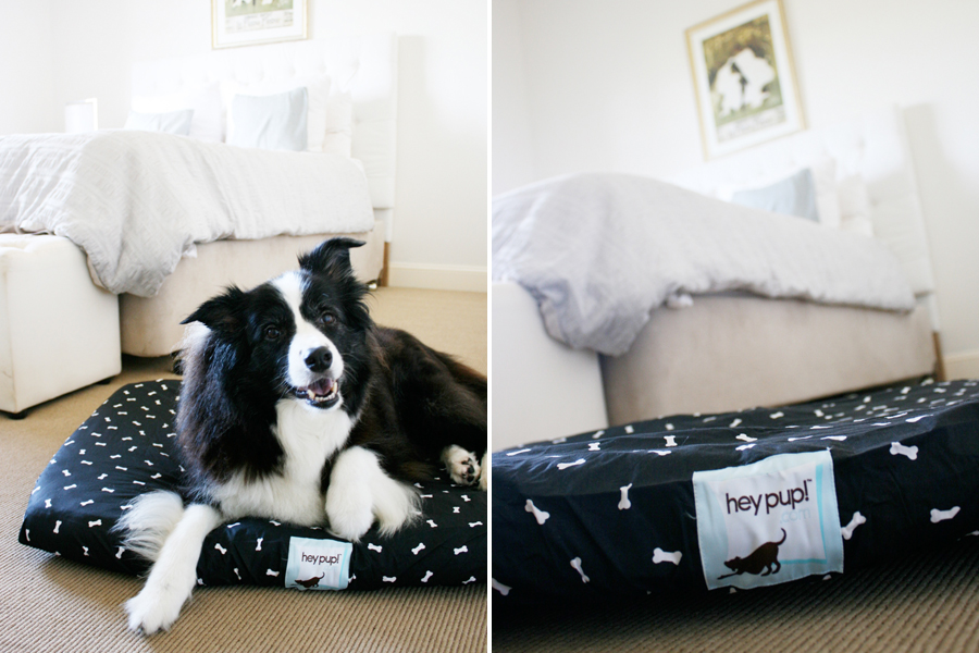 Hey Pup Dog Bed Review | Pretty Fluffy
