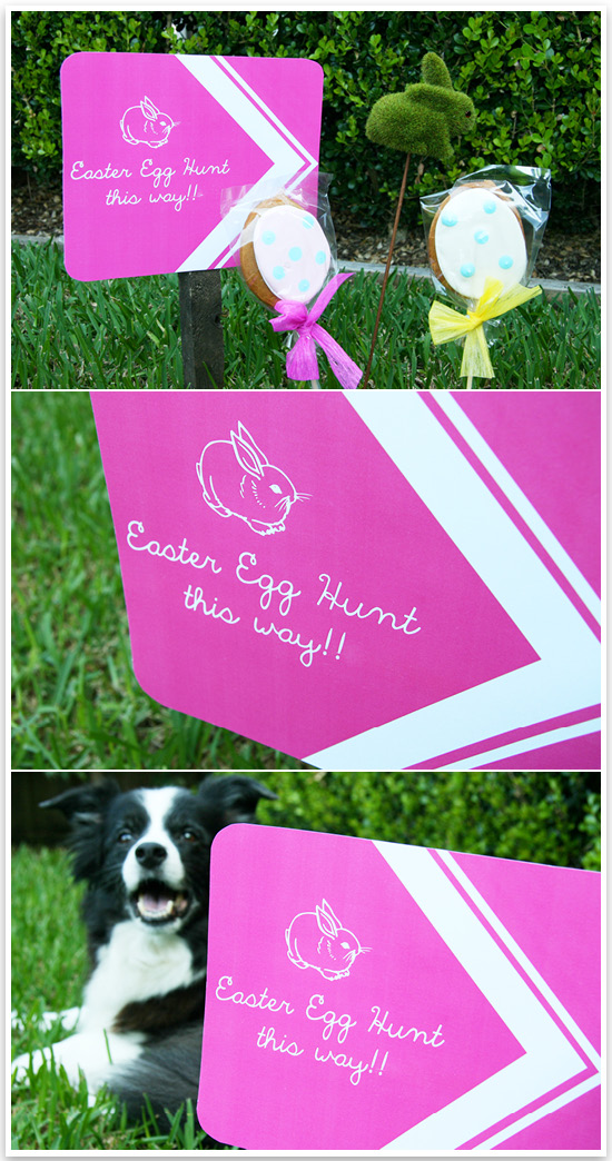 A fun Easter Egg Hunt for fur-children! Includes printable signage, dog friendly easter treat ideas and photo instructions.