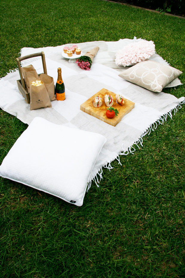 DIY Outdoor Cinema Picnic | Mothers Day Picnic Ideas  Looking to spoil your mum? Try our Mothers Day Picnic ideas including a DIY outdoor cinema, and yummy picnic menu - Mothers Day luxury on a budget!