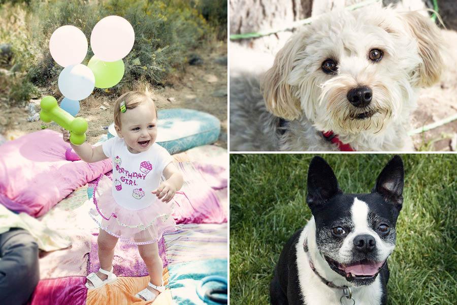 DIY Dog Themed Childrens Party | Pretty Fluffy