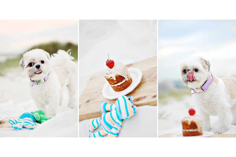 The BEST Dog Birthday Cake Recipe | The best Dog Birthday Cake Recipe of all time. Super easy to make, healthy, dog-safe ingredients and 100% tasty! Grab the FREE recipe here.