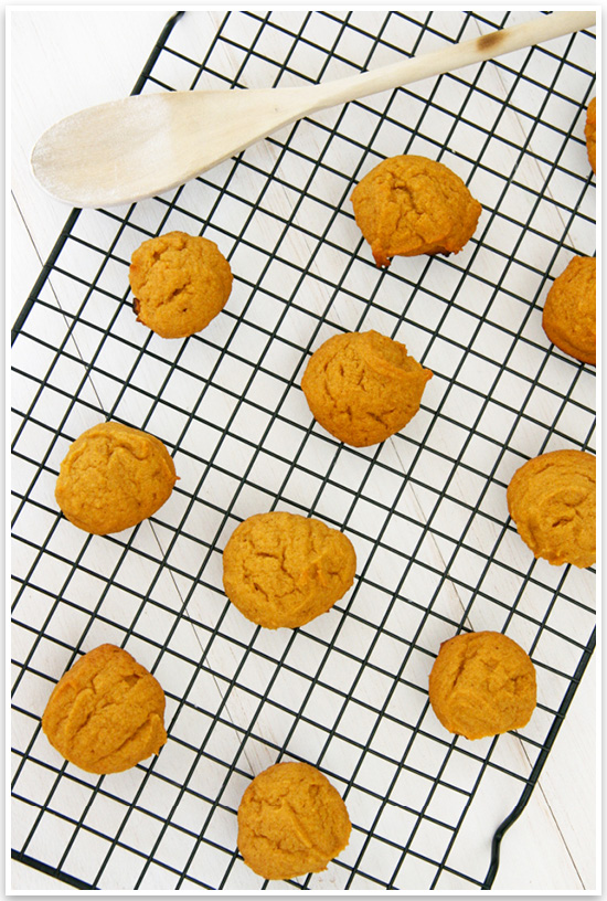 DIY Halloween Dog Treat Recipe | Looking for a quick and easy way to get your dog in on the Halloween spirit? Try our quick and easy Halloween dog treat recipe! Click for the full tutorial. | Pretty Fluffy