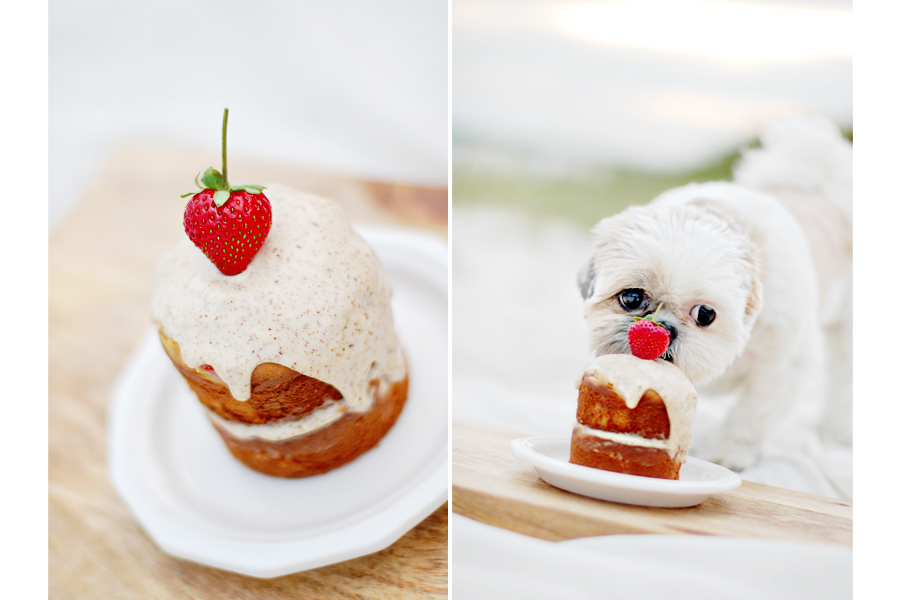 The BEST Dog Birthday Cake Recipe