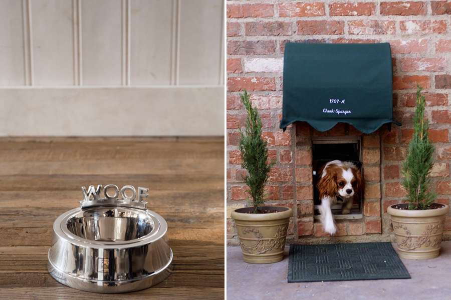 Doggy Door - The Perfect Pet Friendly Home | Pretty Fluffy