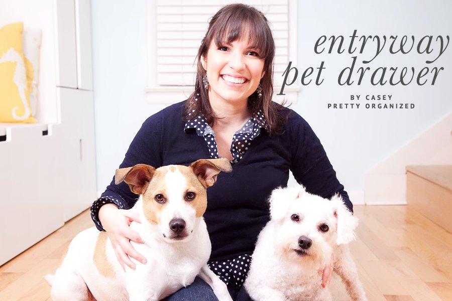 Organized Pet Drawer   Pretty Fluffy