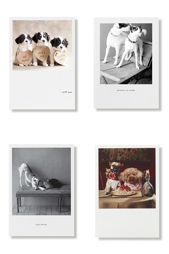Valentines Day Cards - Hooray for the Underdog | Pretty Fluffy