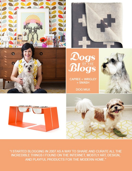 Dogs of the Blogs | Dog Milk | Pretty Fluffy