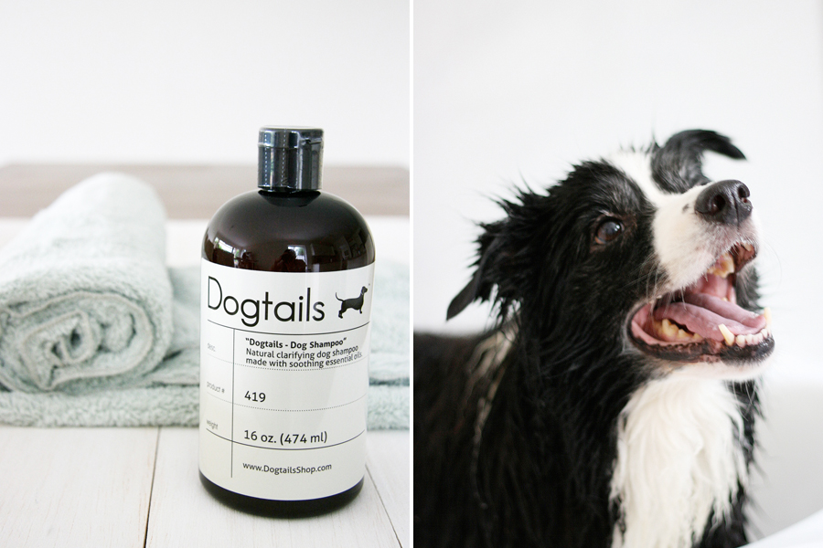 Dogtails Shampoo | Pretty Fluffy
