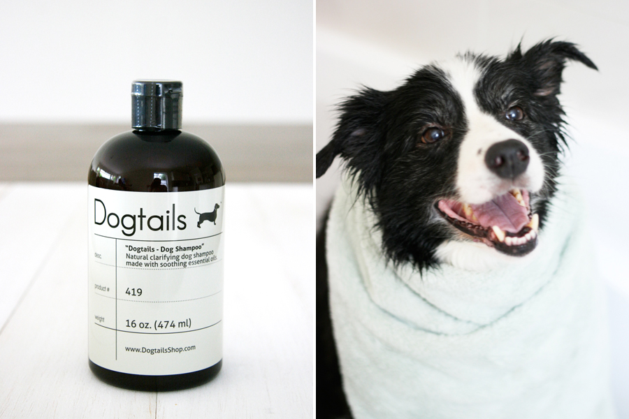 Dogtails Shampoo and Micro Fiber Towel | Pretty Fluffy