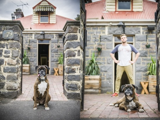 Merrick the Boxer by Erin King Photographer | Pretty Fluffy