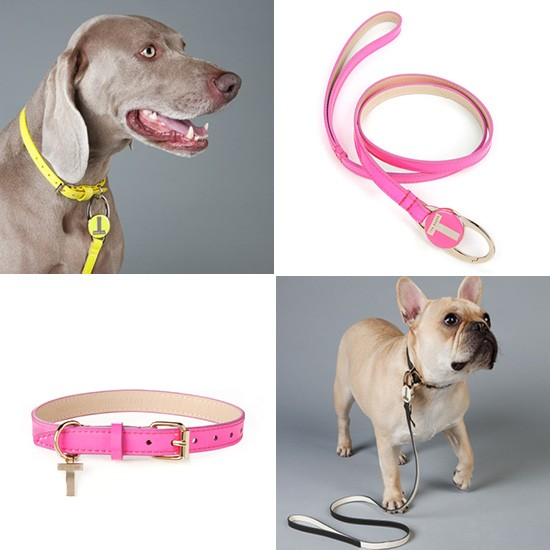 Ted Baker Patent Collars and Leads | Pretty Fluffy