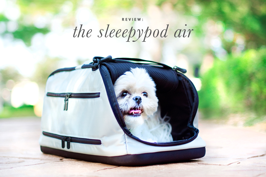 11 Of The Best Travel Carriers For Dogs