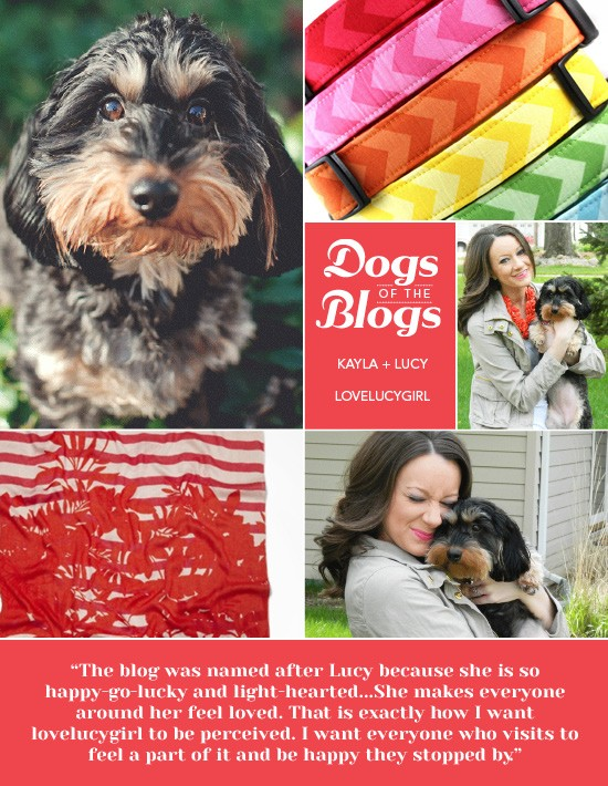 Dogs of the Blogs | lovelucygirl | Pretty Fluffy