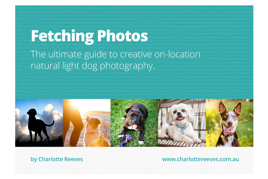 Fetching Photos ebook by Charlotte Reeves | Pretty Fluffy
