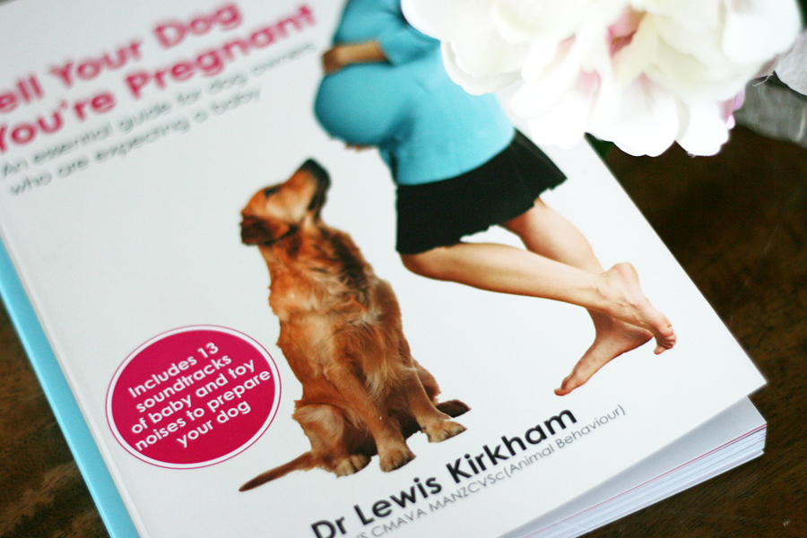Tell Your Dog You're Pregnant Book Guide | Pretty Fluffy