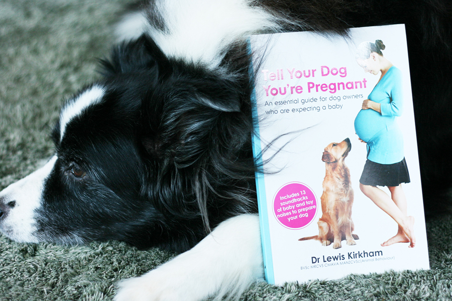 Tell Your Dog You're Pregnant | Pretty Fluffy