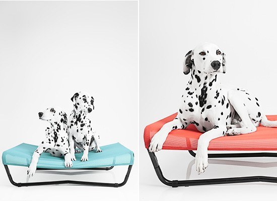 Dogtired Dog Beds comes in 3 colours - Ice, Coral and Slate | Pretty Fluffy