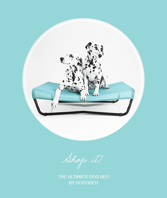 Dogtired the Ultimate Dog Bed | Pretty Fluffy