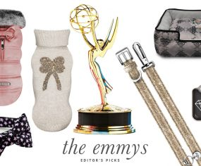 Emmy Awards Inspired Dog Accessories | Pretty Fluffy