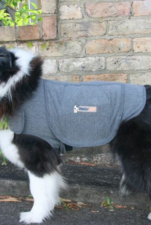 Thundershirt - Reduces Anxiety in Dogs