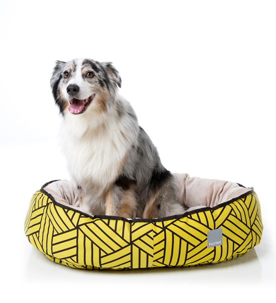 WIN this FuzzYard Reversible Pet Bed > Enter the Pretty Fluffy Christmas Giveaway - over $2000 in prizes to be won.