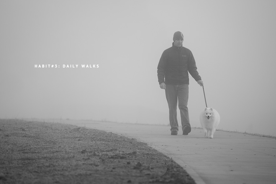 HEALTHY HABITS: Dogs Walks are the #1 thing to keep your pooch happy and healthy on a physical and emotional level. It's their chance to explore, improve their fitness, engage their senses and exercise their joints. (C) Photo by Akemi Photography