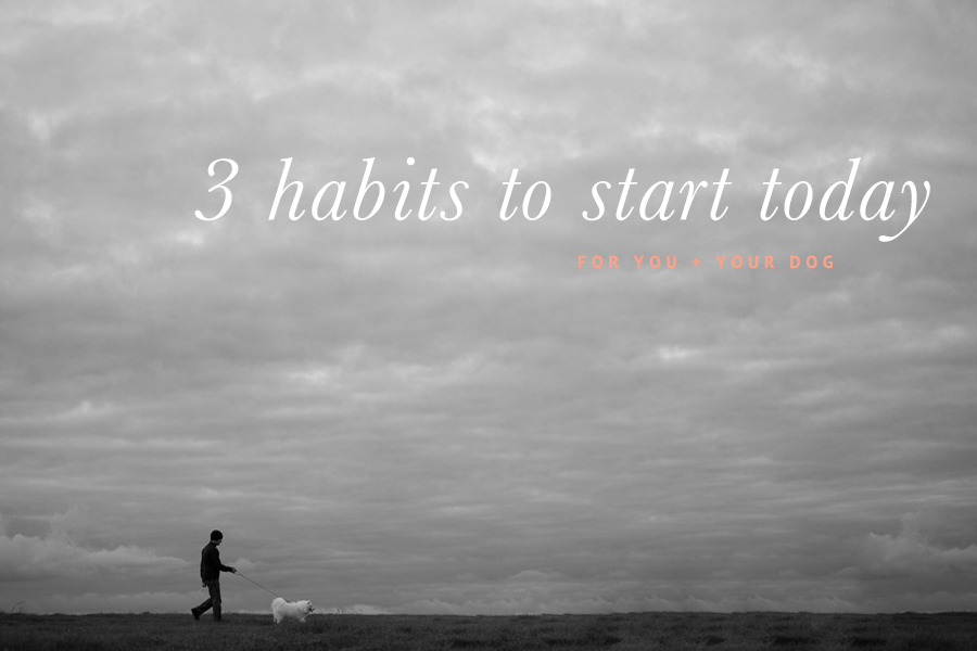 3 Healthy Habits for YOU + YOUR DOG (C) Photo by Akemi Photography