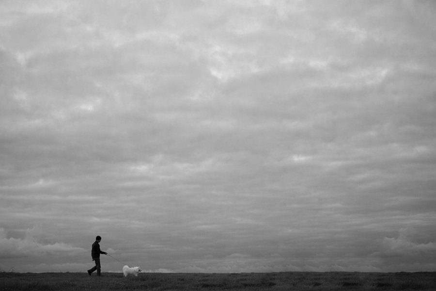 3 Habits You & Your Dog Should Start Today: Daily Walks (C) Photo by Akemi Photography