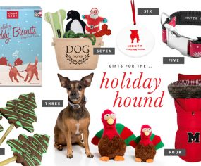 Holiday Gift Guide for Pets - Christmas Gifts for Dogs