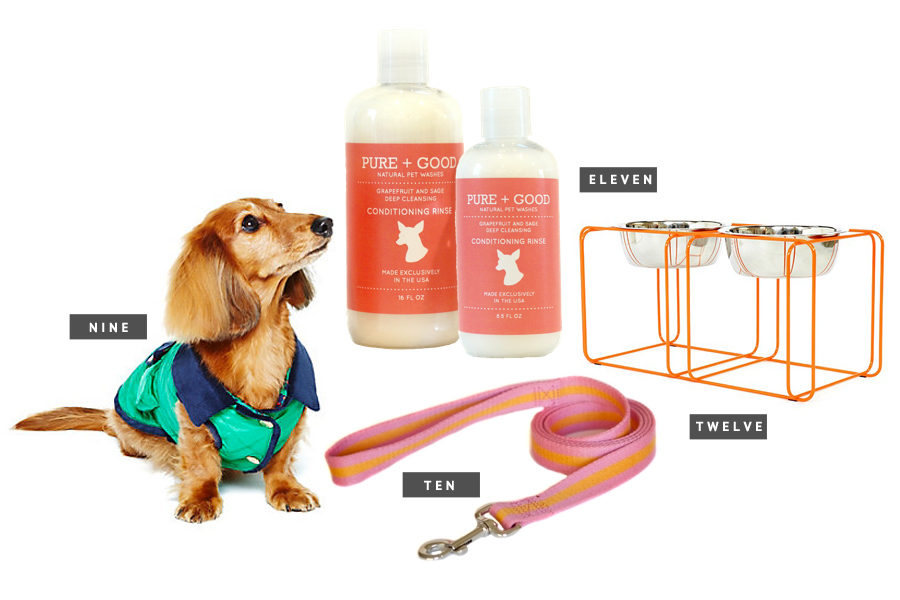 Holiday Gift Guide for Pets - Gifts for the Modern Dog