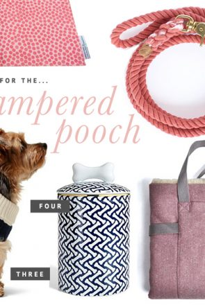 Holiday Gift Guide for Pets - Gifts for the Pampered Pooch