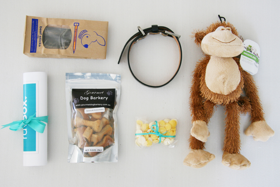 RuvBox - Subscription Gift Box for Dogs feat. dog treats, dog toys and collars