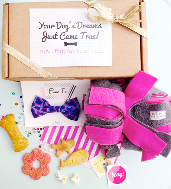 Pup Tart Christmas Gift Box for Dogs