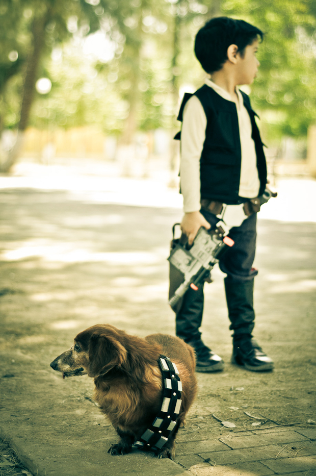 Chewbacca & Friends by Cuije Photo | Star Wars Dog | Pretty Fluffy