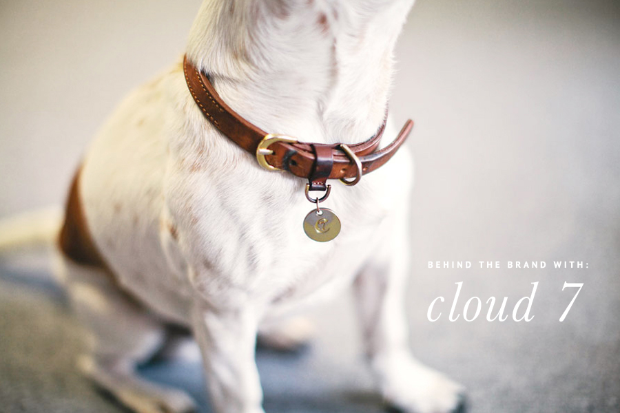 Cloud 7 Luxury Dog Accessories - Studio Tour