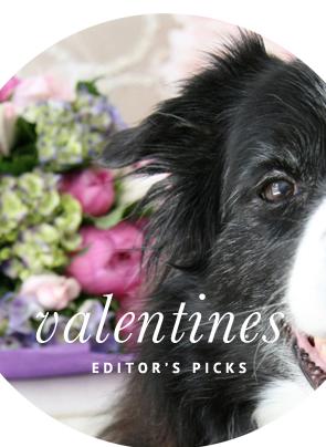 Valentines Day Dog Accessories