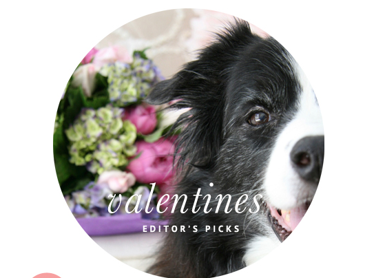 Valentines Day Dog Accessories