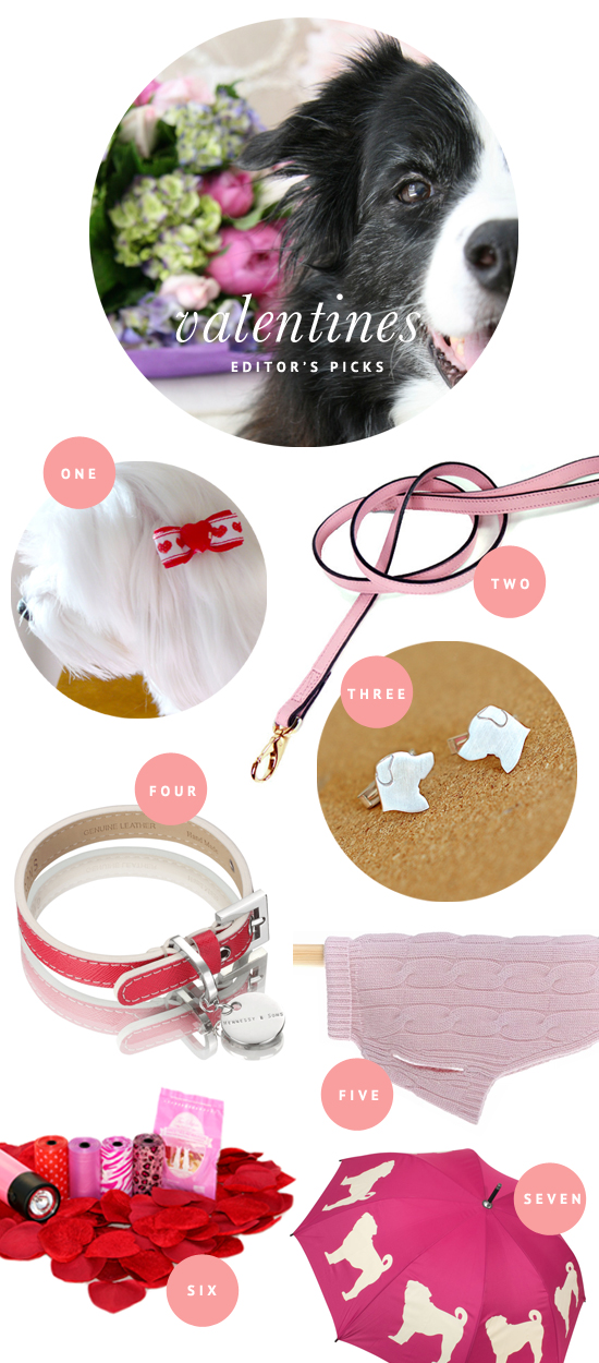 Valentines Day Inspired Dog Accessories | Pretty Fluffy